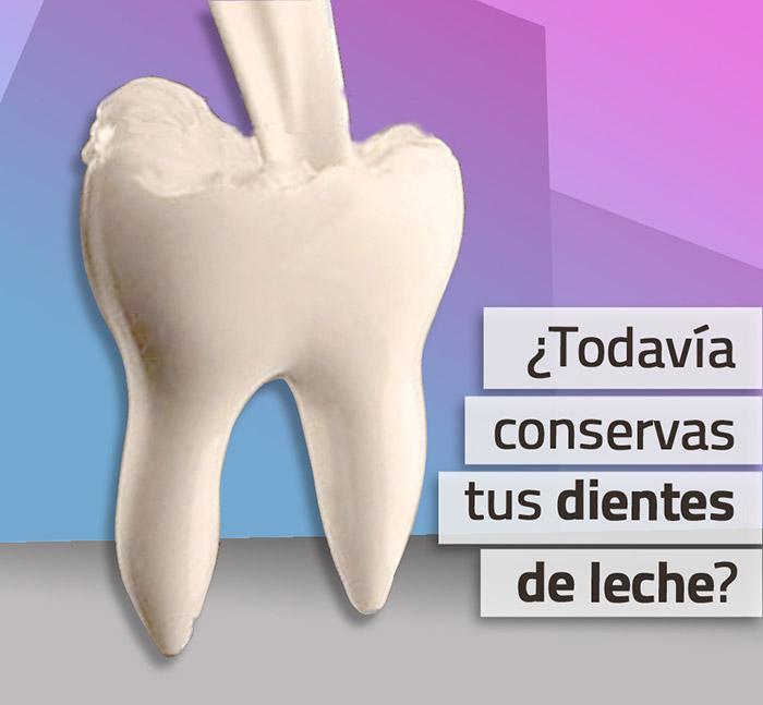 Ortodoncia Para Adultos Con Dientes De Leche Novasmile