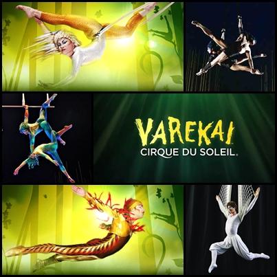 Varekai, Cirque Du Soleil
